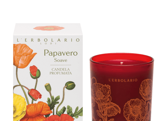 Papavero Candle Candela 37 ore