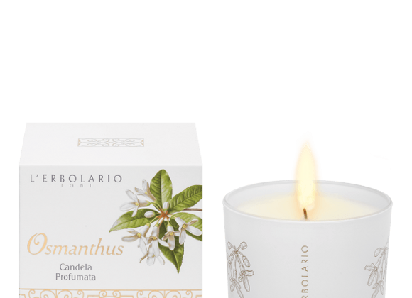 Osmanthus candle Candela 28 ore