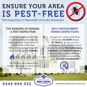Pest Inspections in Newcastle and Lake Macquarie - Brent Heness Inspections