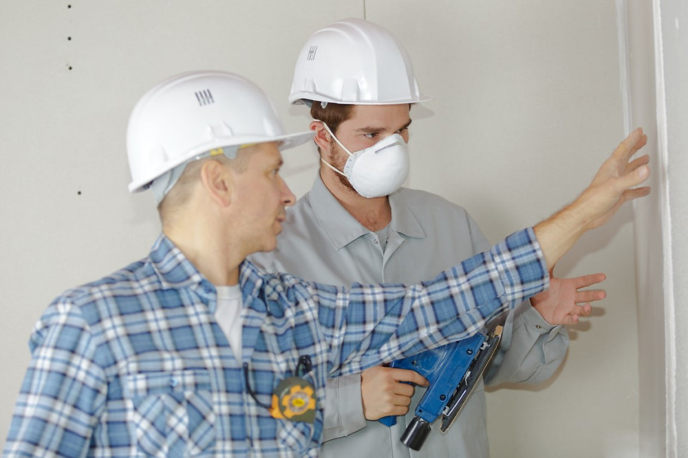 Pest Inspection - Brent Heness Inspections