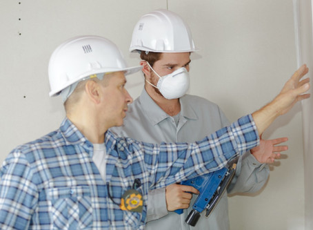 Pest Inspections in Newcastle and Lake Macquarie