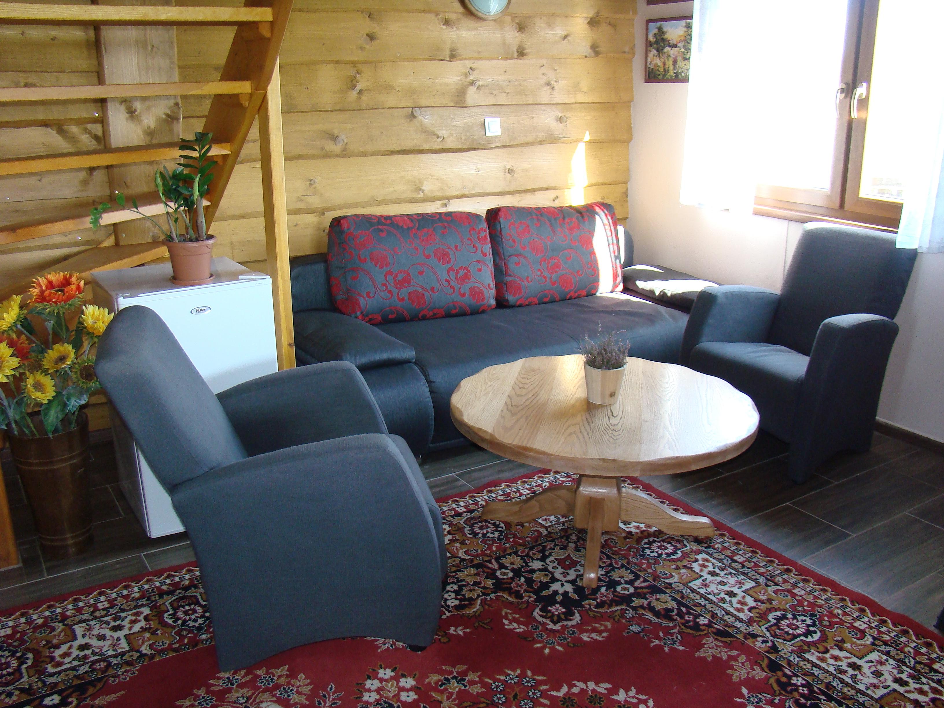 Salon z rozkładana kanapą