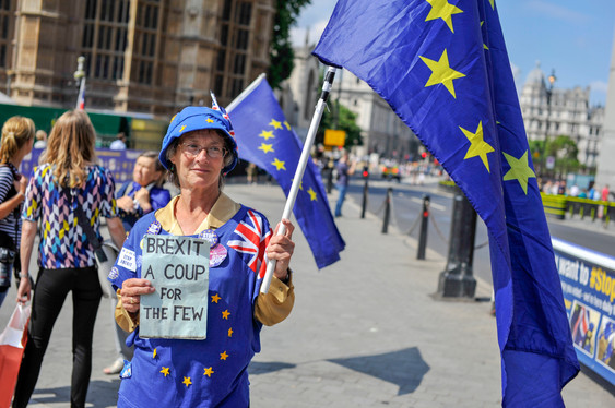 Brexit A Coup For The Few, 2018