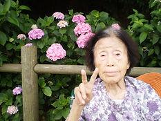 紫陽花見学② 訂正