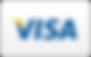 Visa-Curved.png