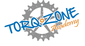 Torqzone logo without slogan.png