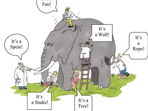 'Elephant Spotting' or the importance of Shared Understanding in Coaching!
