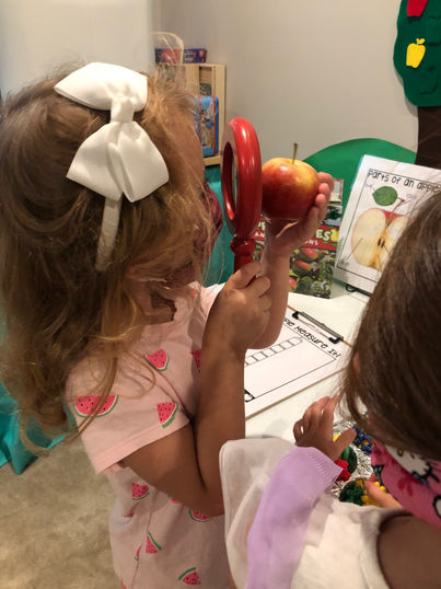 Science - apple discovery