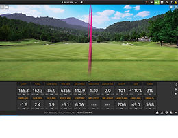 TrackMan 8iron Ball Flight.jpg
