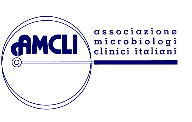 logo_amcli
