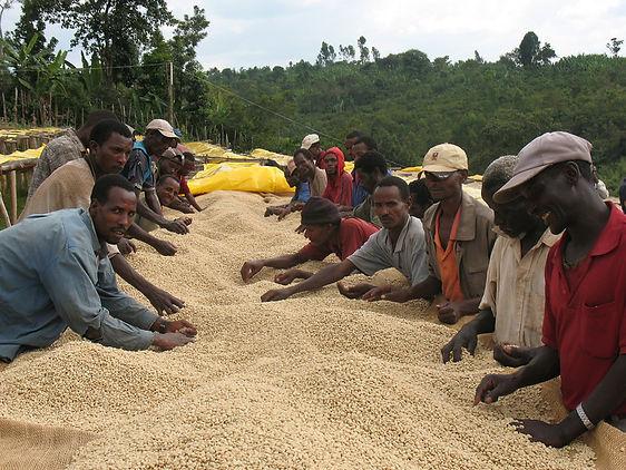Bon Beans Coffee