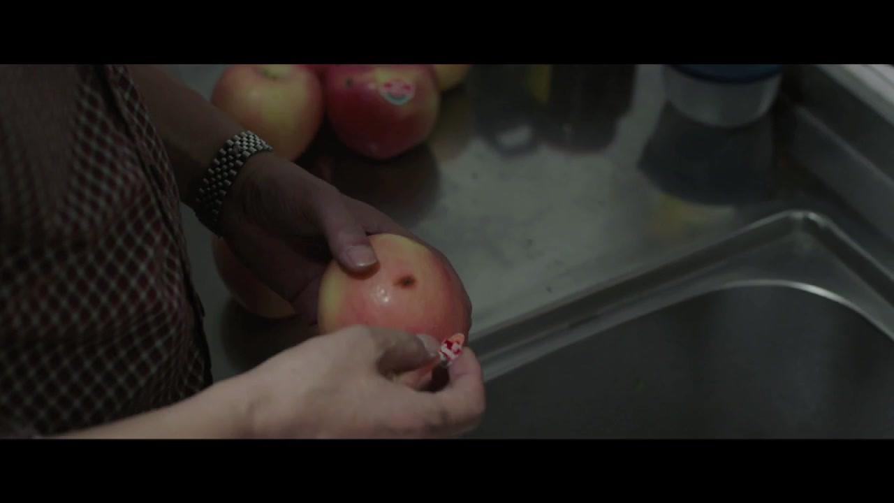 The Fall Trailer.mp4