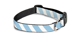 pet collars-lightblue.png