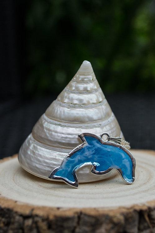 Dolphin beach waves