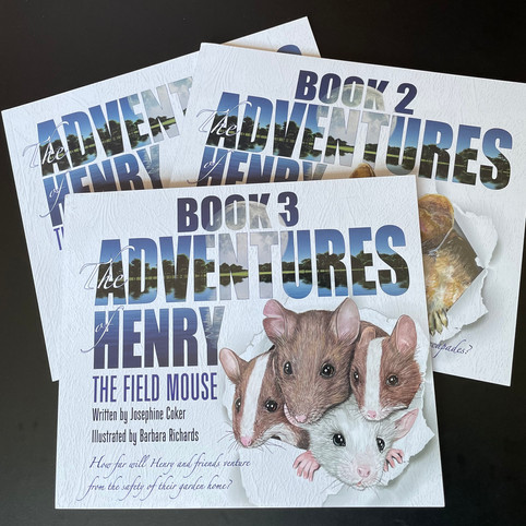 Adventures of Henry the Field Mouse