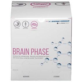 Brain Phase.jpg