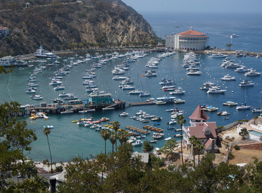 Things To Do In Catalina Island, Avalon, And It's Spectacular Weather