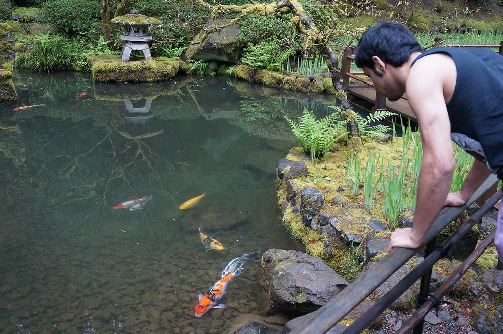 The Zig-Zag bridge by the strolling Pond Garden, Portland Oregon, USA.