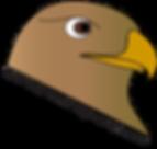 HawkPocomoke2020.png
