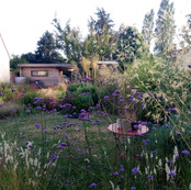 Jardin nord de Caen / 2014