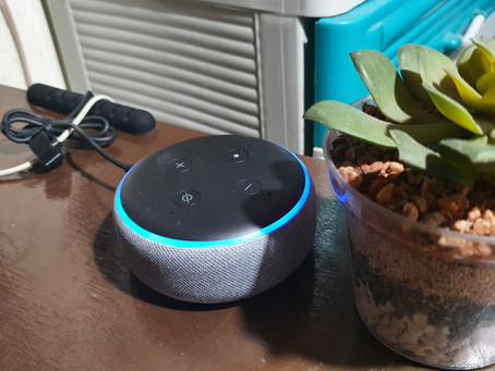 Alexa Device is Unresponsive with Tasks: Alexa App keeps crashing on Android Devices