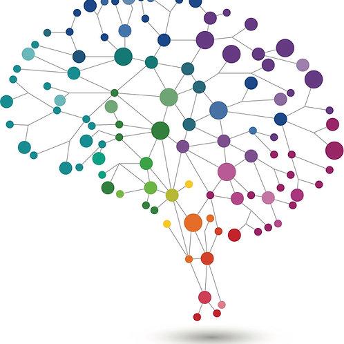 #7229 Clinical Neuroanatomy for Rehabilitation Therapists©