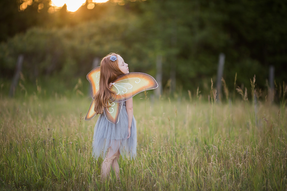 little girl dreaming with fairy wings in field