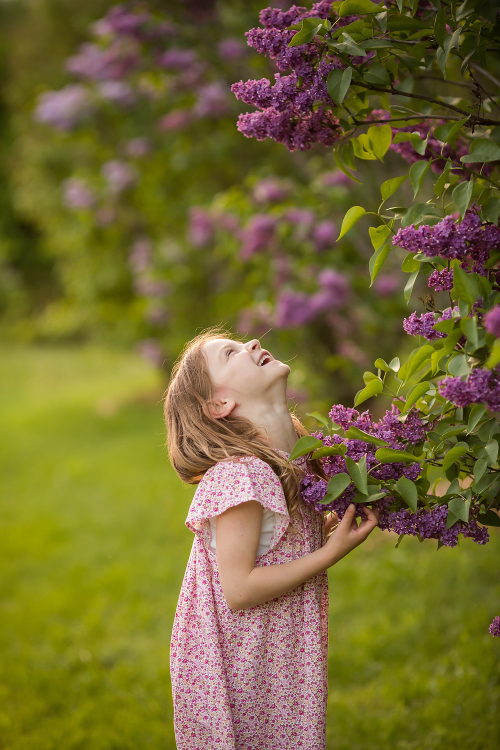 laughing girl in the lilacs