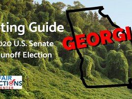 New Voting Guide For GA U.S. Senate Runoff Elections