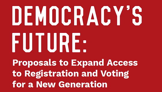 Democracy's Future graphic.PNG