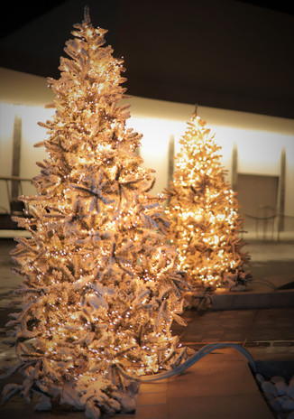 CHRISTMAS EVENT CYPRUS