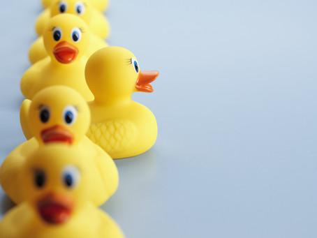 Duck, Duck----Cyber Goose!