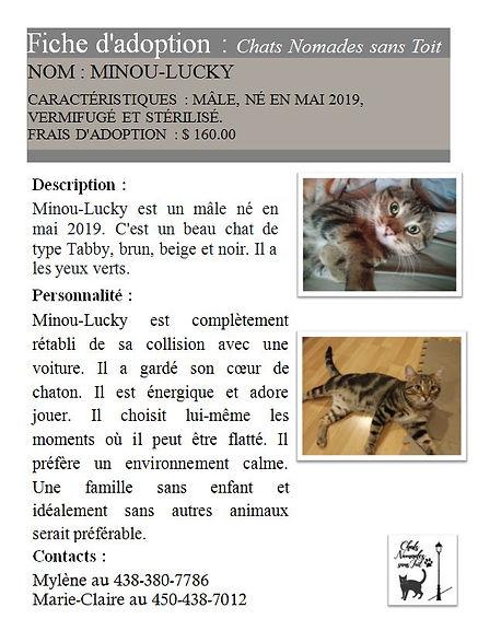 Minou-Lucky (M,S,Ve,mai 2019,Mylène Bour