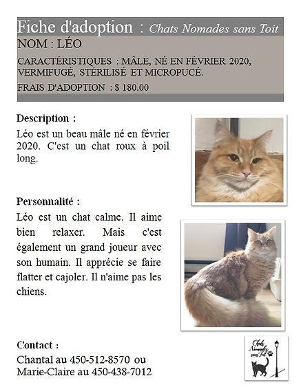 Léo (M,S,Ve,fév. 2020,Chantal Lafond,180