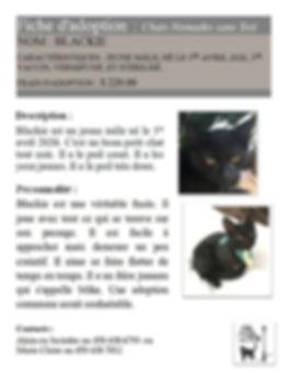 Blackie (M,S,Va,Ve,1er avril 2020,Alain