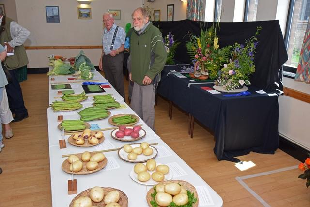 2017 KHS Summer Show - Kidderminster Horticultural Society - 012