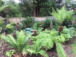 Kidderminster Horticultural Society - Garden Open Day