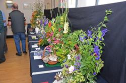 2017 KHS Summer Show - Kidderminster Horticultural Society - 008