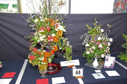 2017 KHS Summer Show - Kidderminster Horticultural Society - 002