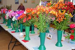 2017 KHS Summer Show - Kidderminster Horticultural Society - 010