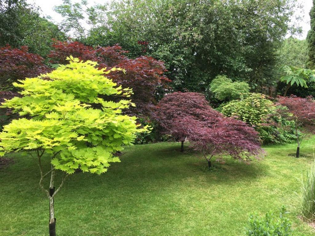 Kidderminster Horticultural Society - Garden Open Day 02