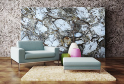 petrified wood white decorative wall