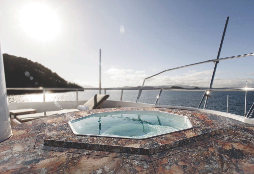petrified wood brown leather finish outdoor jacuzzi yacht