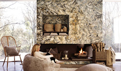 jasper zebra fireplace