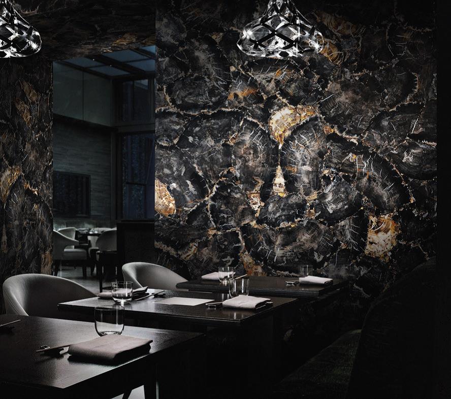 petrified wood black decorative walls