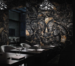 petrified wood black decorative walls