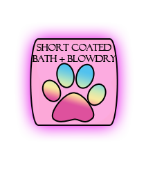 short coated bath and blowdry.png