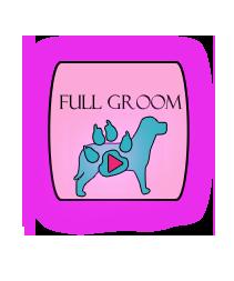 BANNER FULL GROOM 2.png