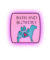 bath and blowdry.png