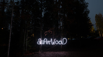 In the woods tonight: DISCUSSION on sustainable architecture at SUPERWOOD festival - Come and join A